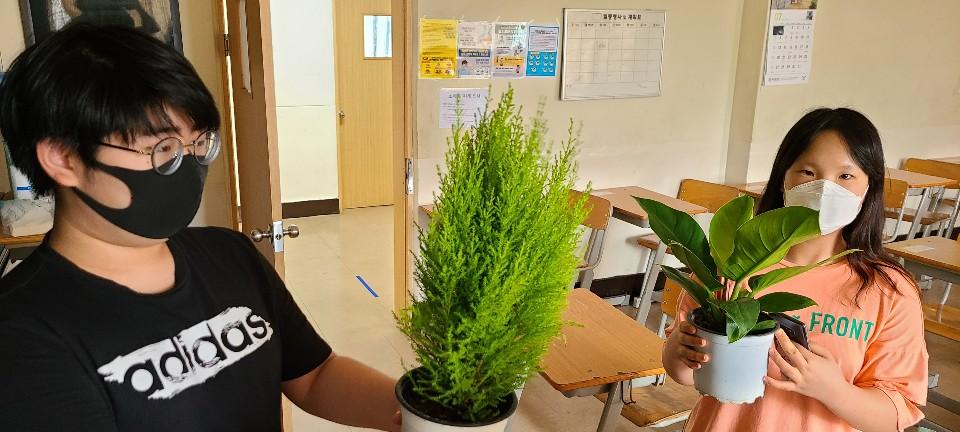 [일반] (과동EGG)푸른하늘 지키미 공기 정화 식물 화분 기르기 활동 (7/24)의 첨부이미지 1
