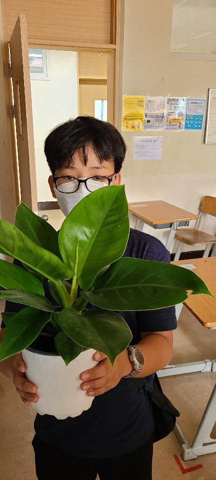 [일반] (과동EGG)푸른하늘 지키미 공기 정화 식물 화분 기르기 활동 (7/24)의 첨부이미지 5
