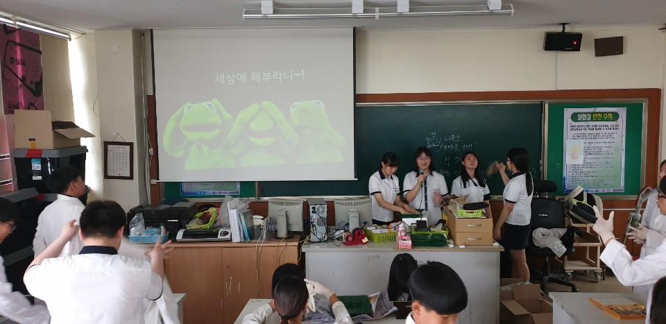 [일반] (과학과)과학동아리 개구리 해부 실험의 첨부이미지 4